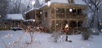 Fallen Tree Farm in snow